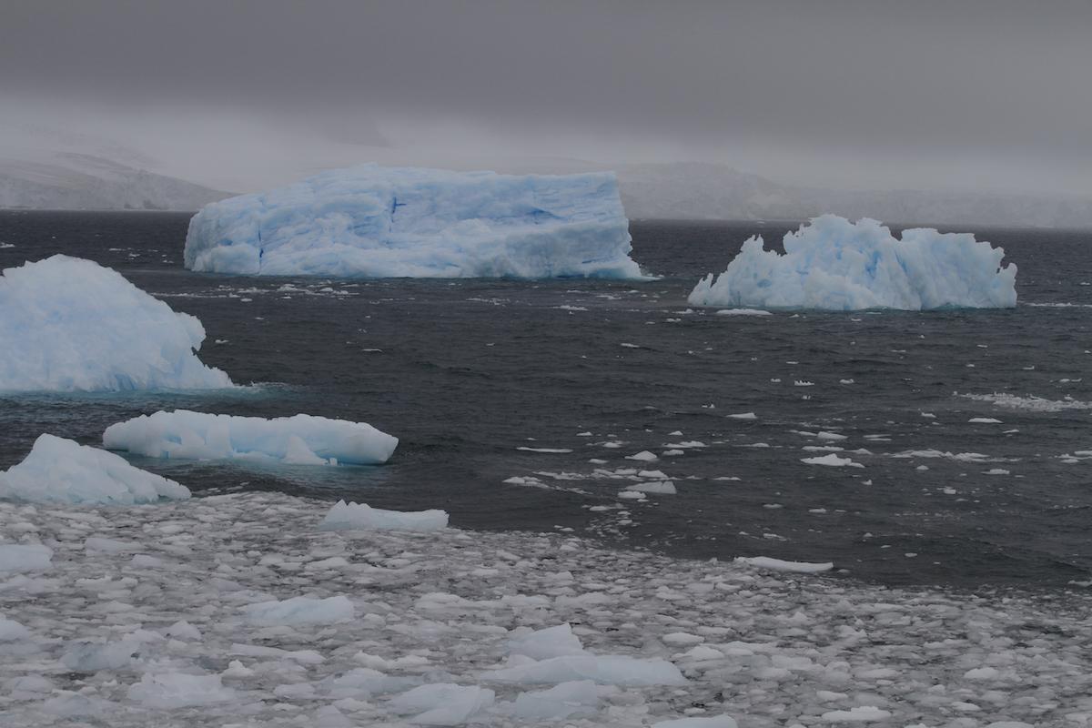 Antartida 5