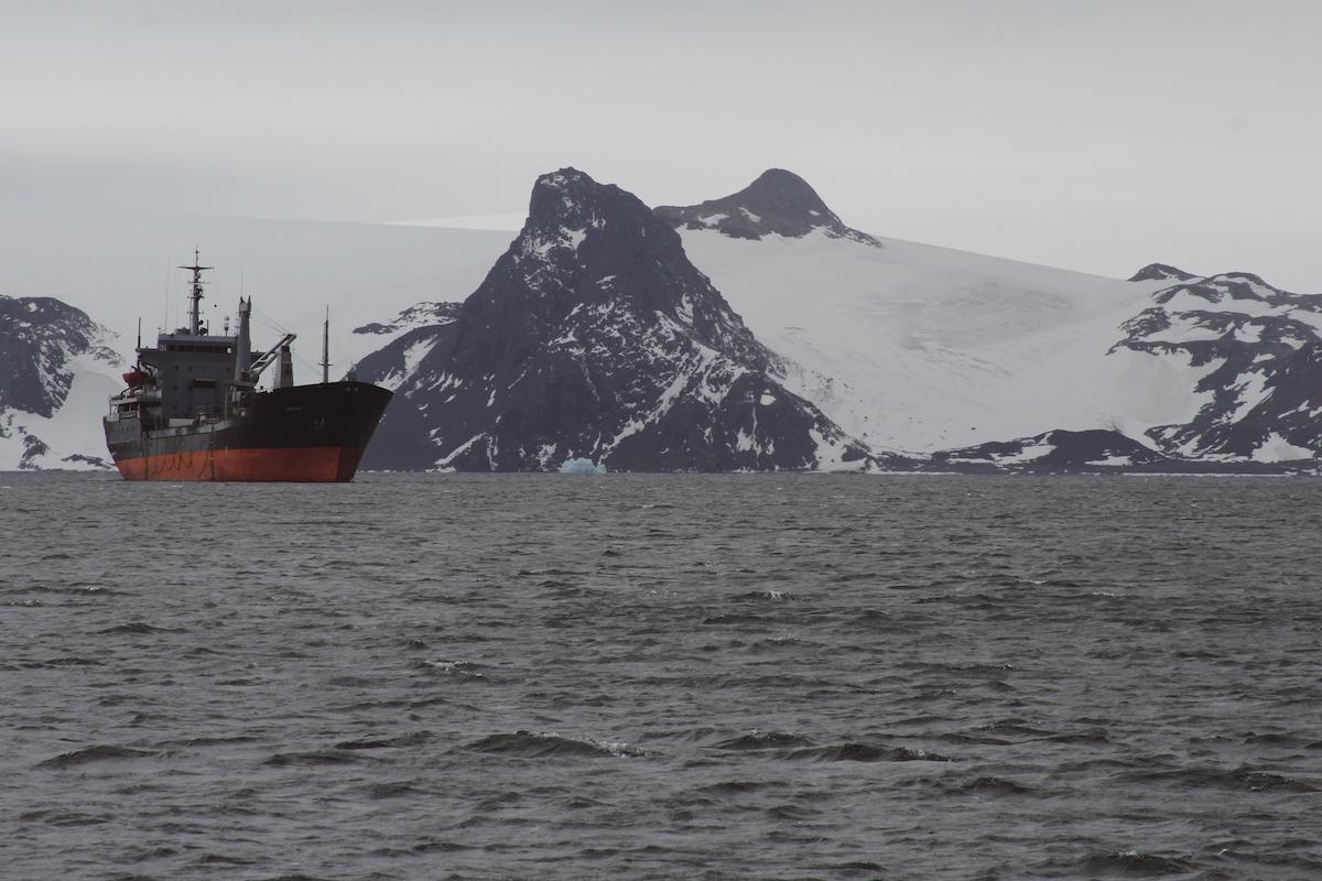 Antartida 7
